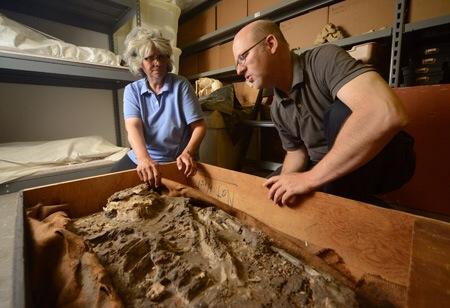 6,500-year-old 'Noah' skeleton found in museumbasement